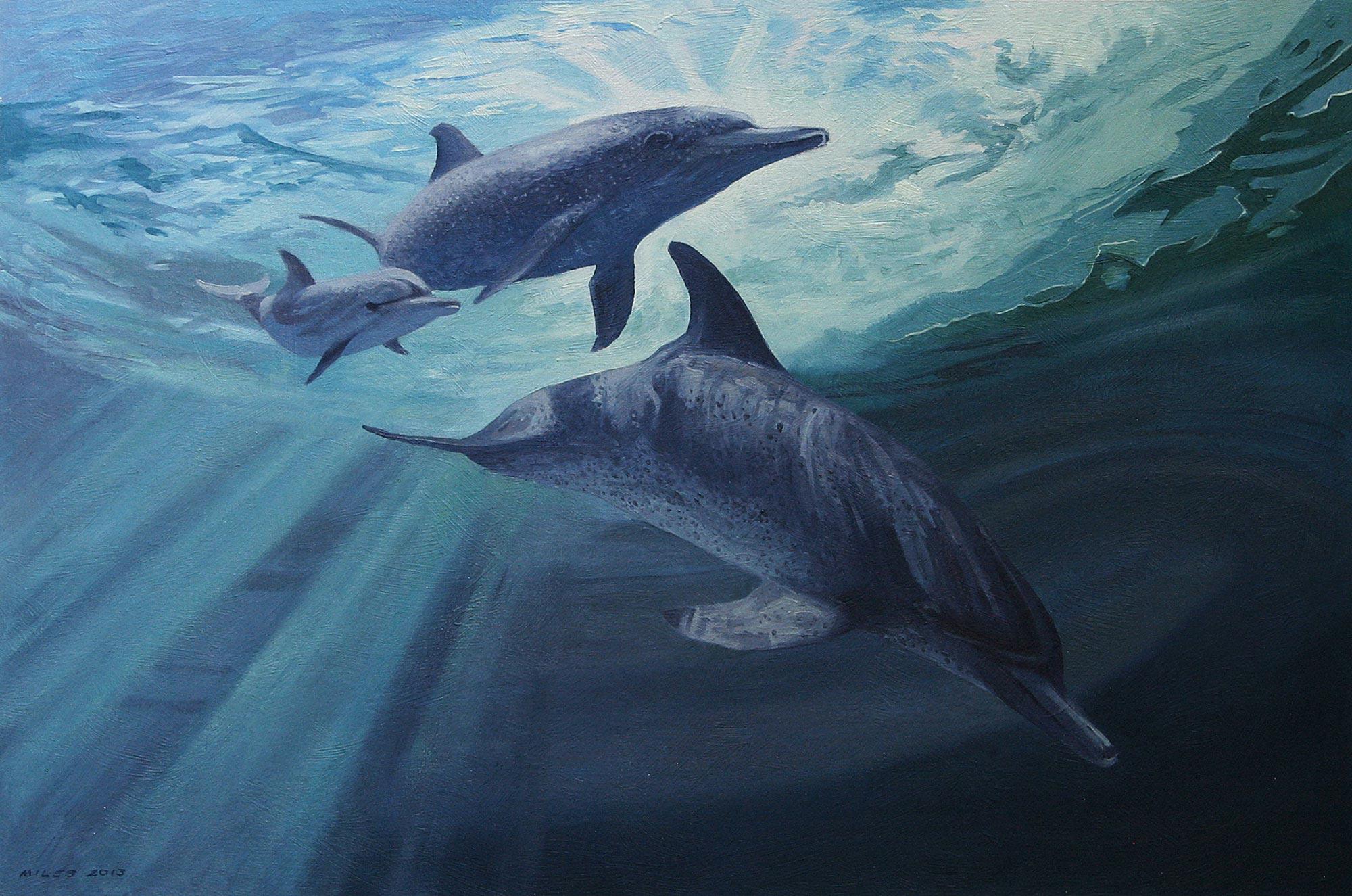 Gerry_Miles_divepaint_underwater_paintings_Atlantic_Spotted_Dolphins.jpg