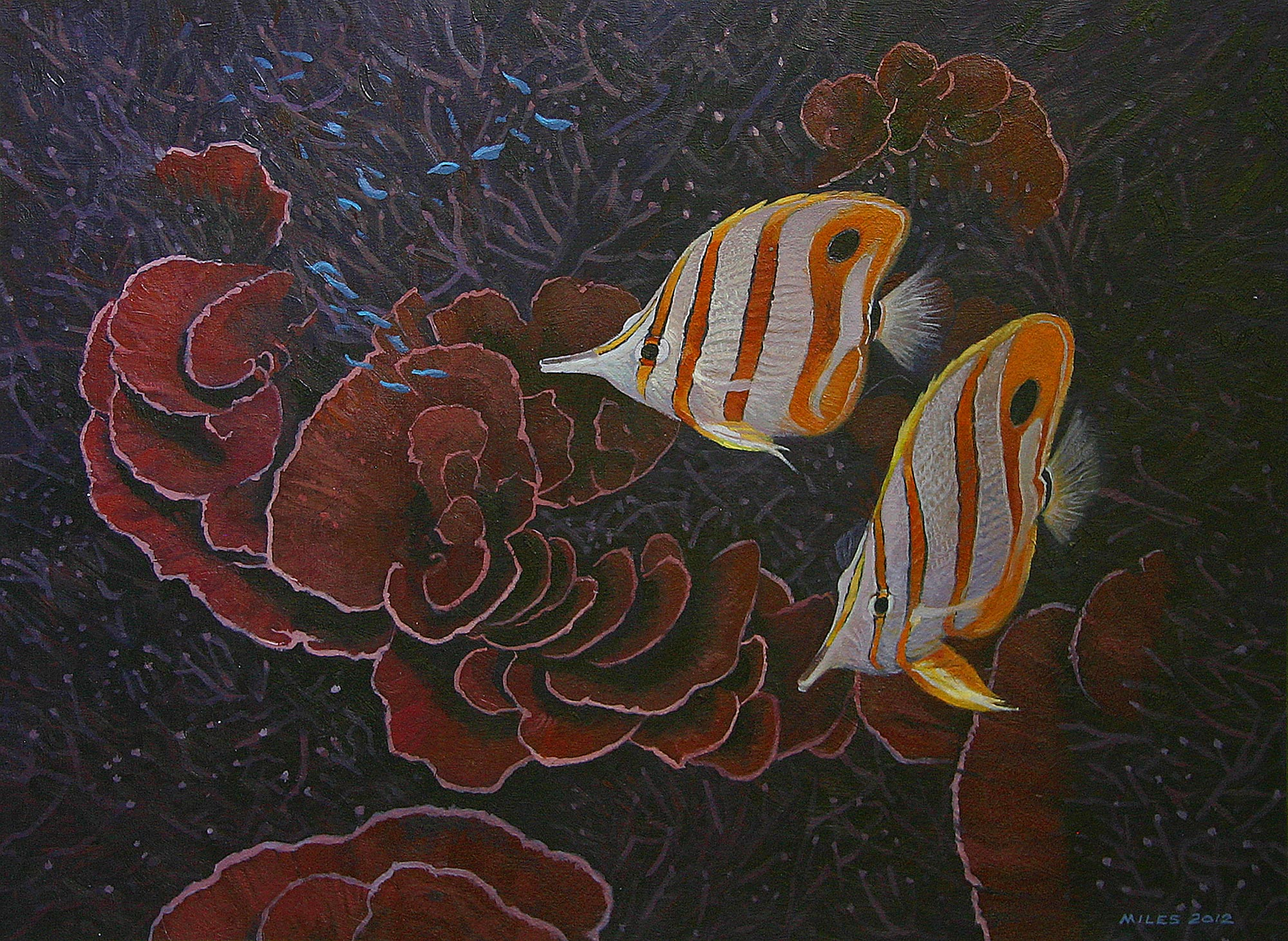 Gerry_Miles_divepaint_underwater_paintings_Copper_Banded_Butterfly_Fishes.jpg