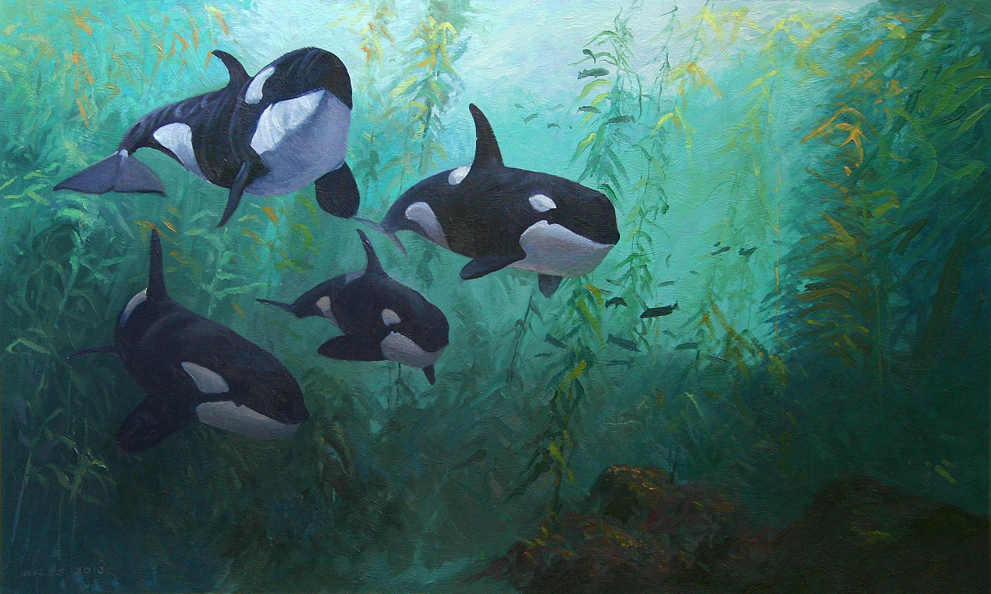 Gerry_Miles_divepaint_underwater_paintings_Cruising_the_Kelp_Forest.jpg