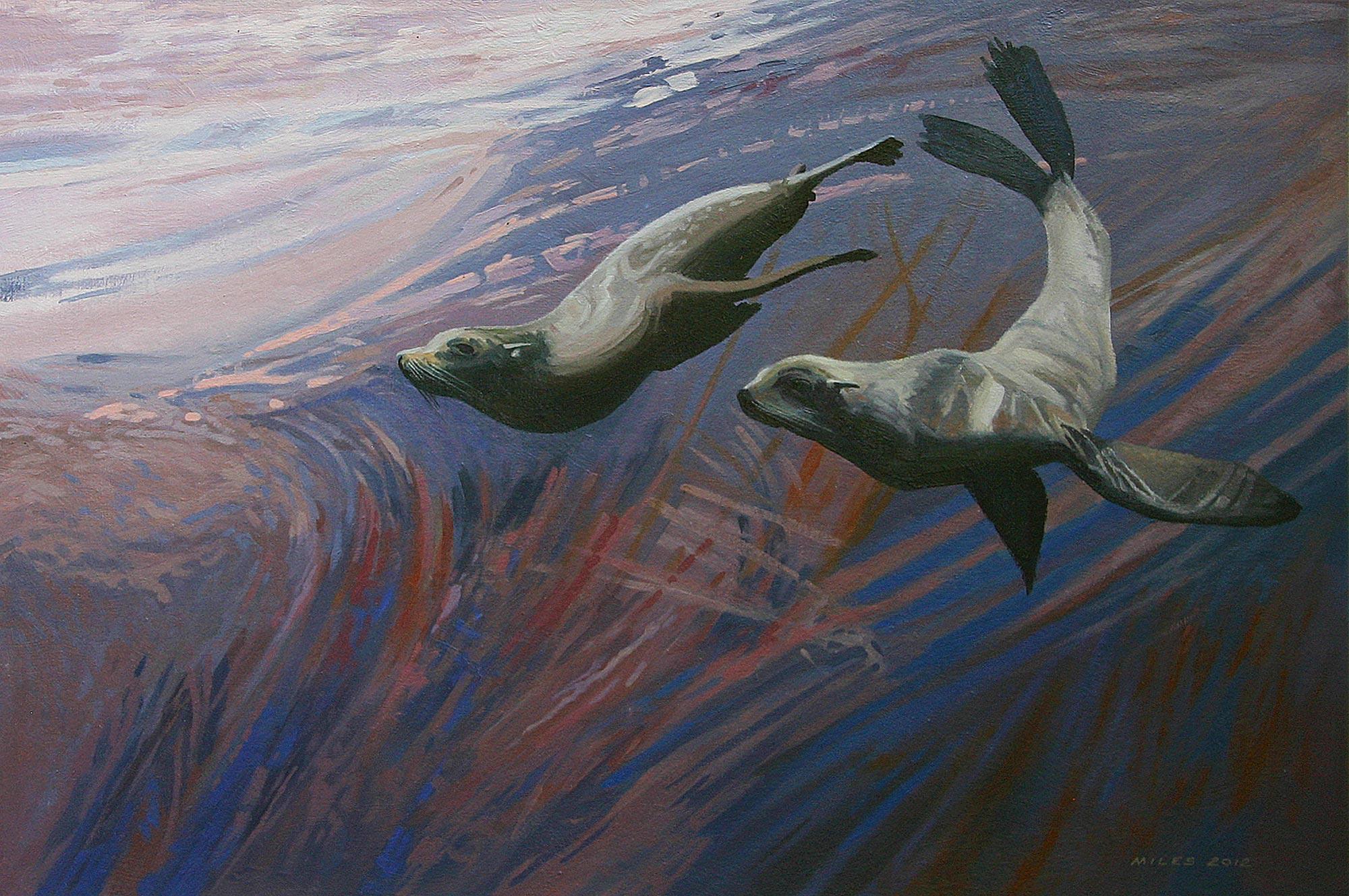 Gerry_Miles_divepaint_underwater_paintings_Galapagos_Fur_Seals.jpg