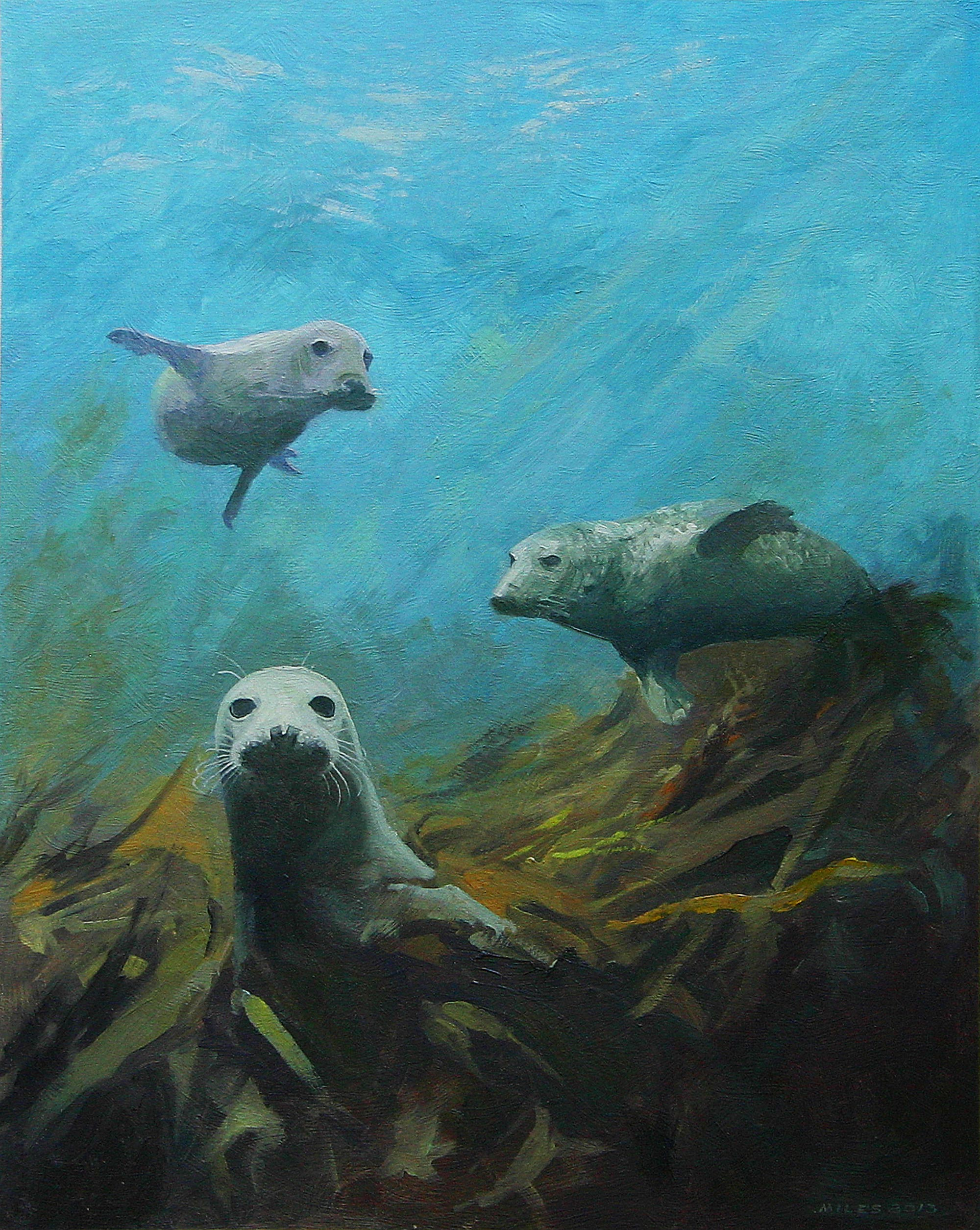Gerry_Miles_divepaint_underwater_paintings_Grey_Seals_of_the_Scilly_Islands.jpg