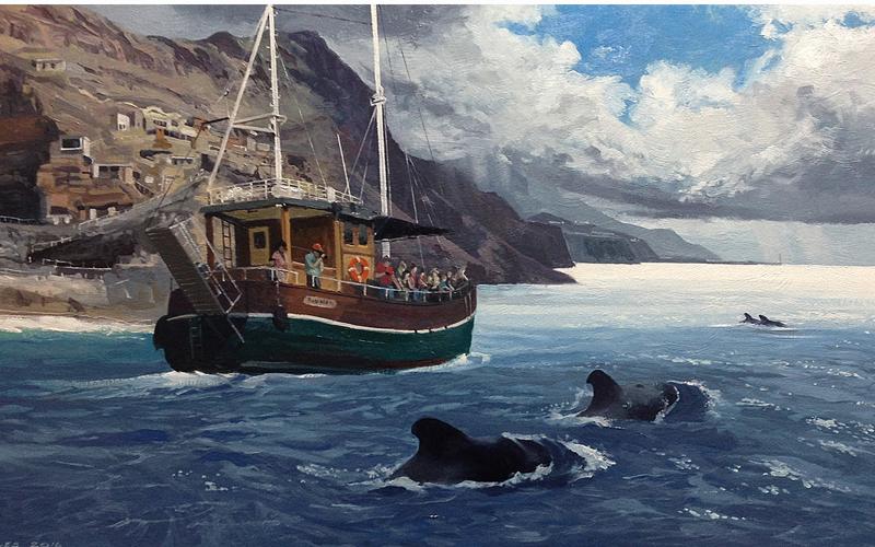 Whale Watching in La Palma