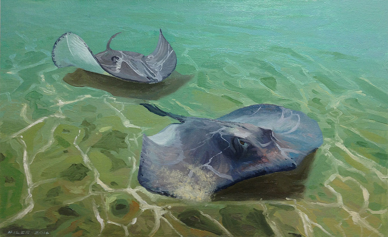 Underwater-Painting-Gerry-Miles-Sting-Ray-City.jpg