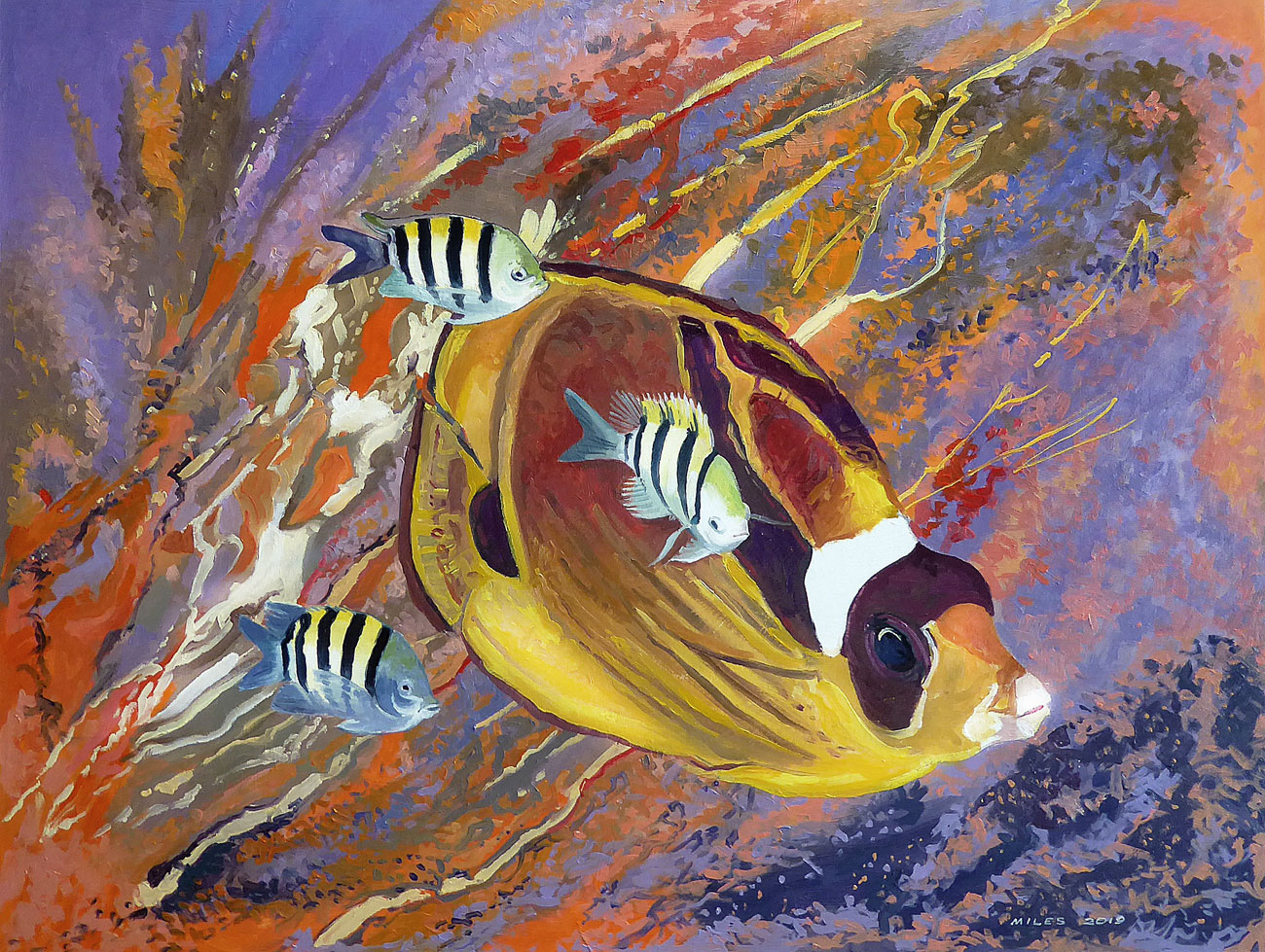 underwater-painting-gerry-miles-racoon-butterfly-fish-with-sergeant-majors.jpg