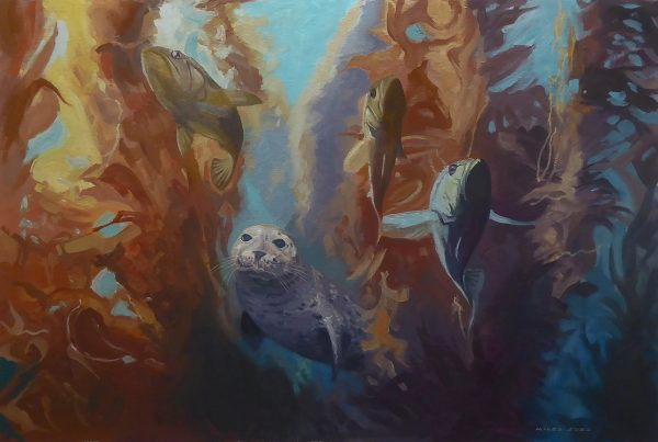 Seal pup hunting in a kelp forest