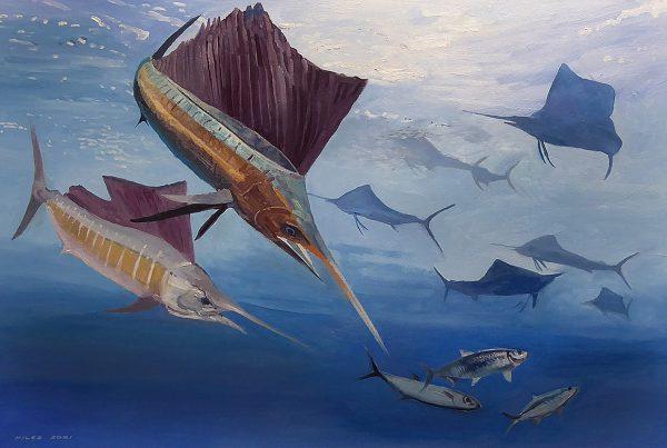 Sailfish open water attack